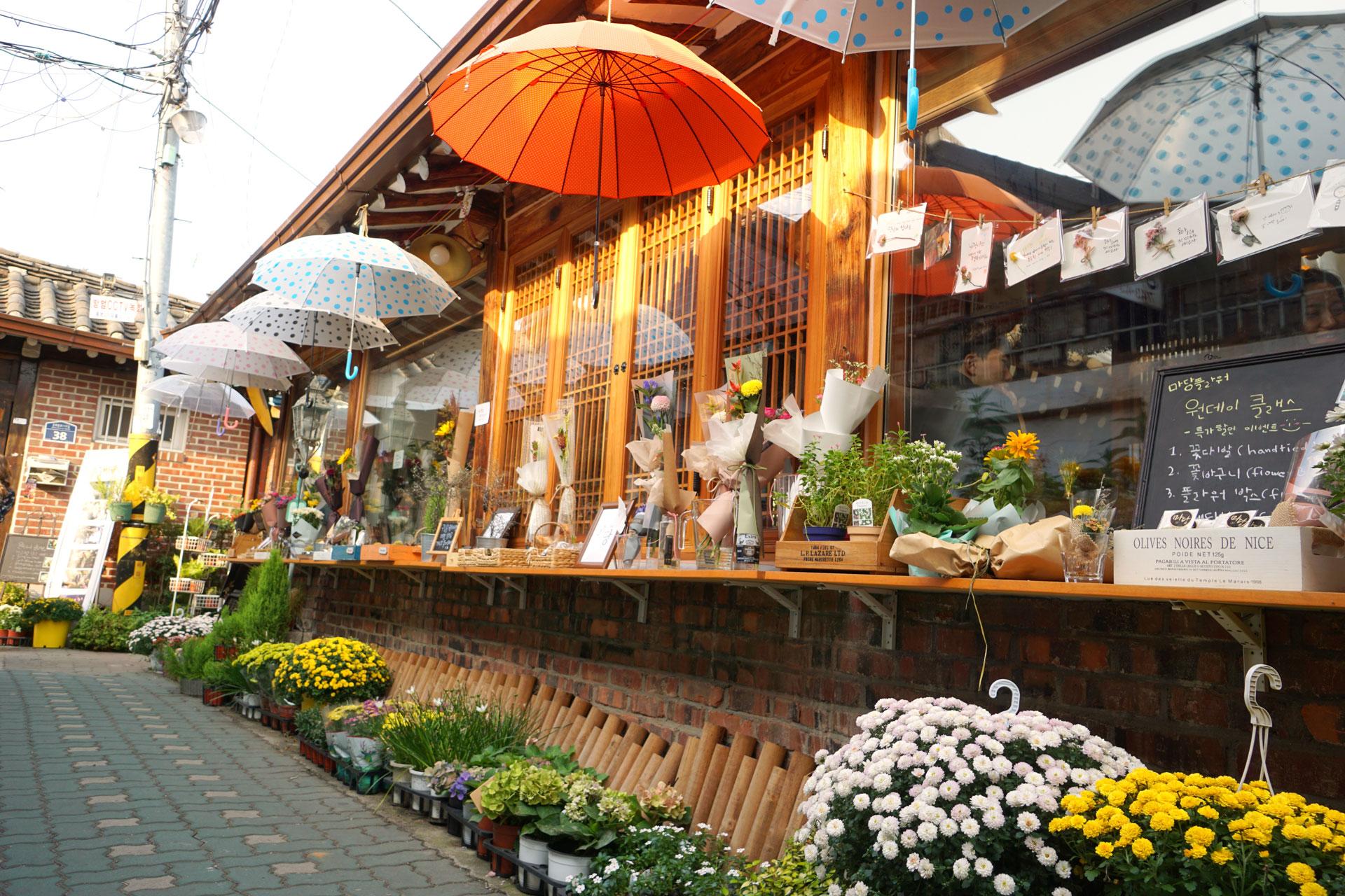 In Ikseondong finden sich viele Blumengeschäfte mit großer Auswahl an lokalen Pflanzen.