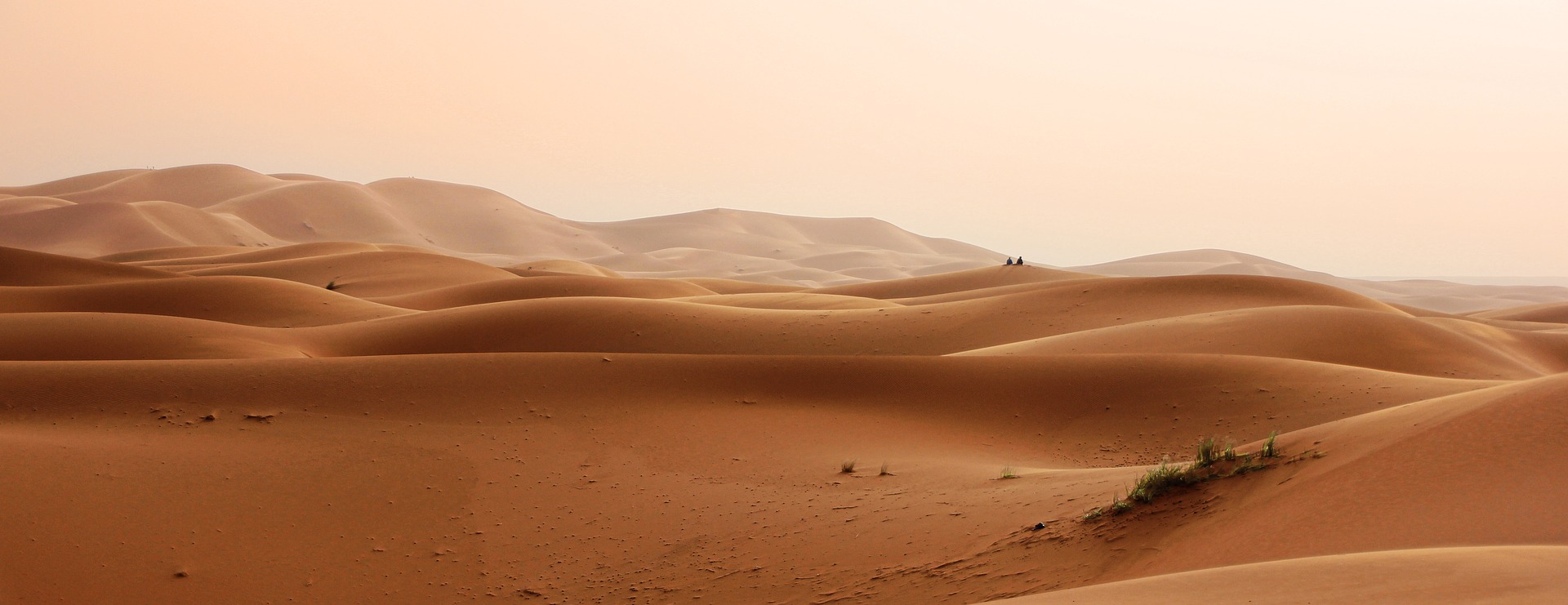 Scheinbar endlose Sahara